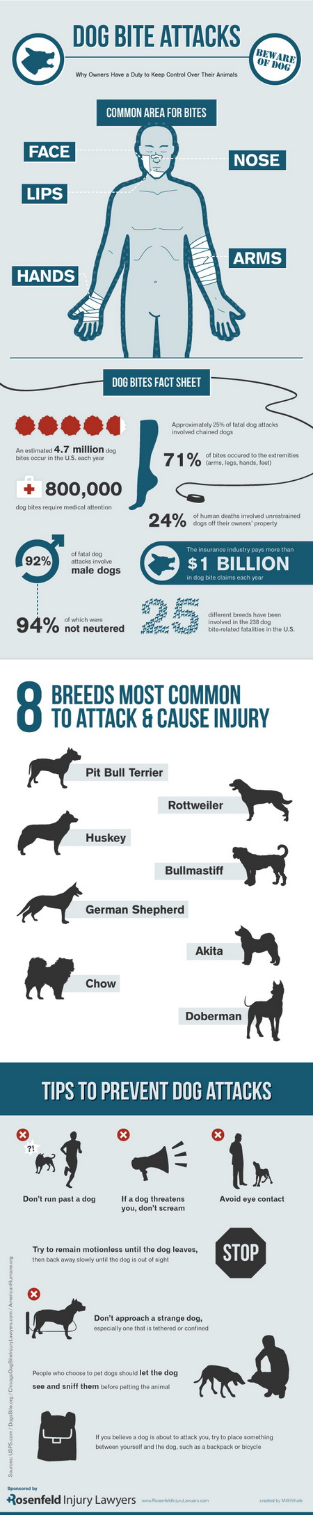 Dog Attack Infographic_resize
