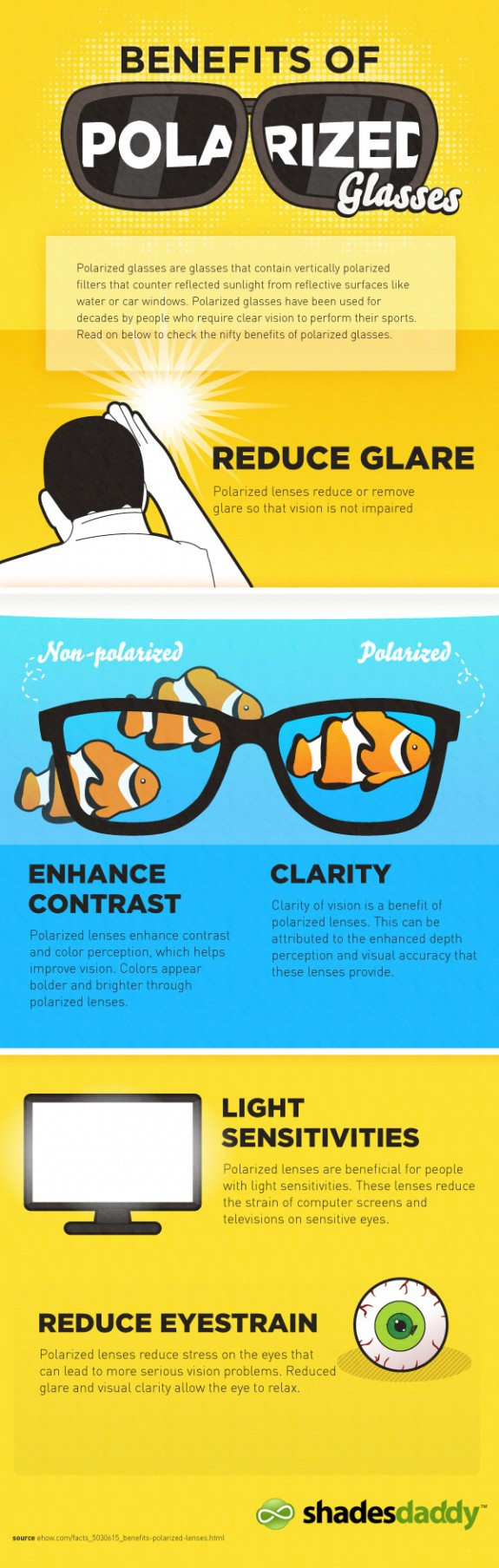 Benefits of Polarized Glass Infographics